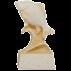 Trophée Pierre du Gard 1541 Carpe 18 cm