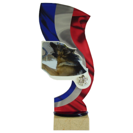Trophée Acryglass Concours canin RING 59411 (3tailles)