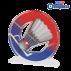 Trophée Acryglass ACTW0200M2 Badminton  (3 tailles)