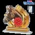 Trophée Acryglass ACTS0200M15 Cheval-Equitation