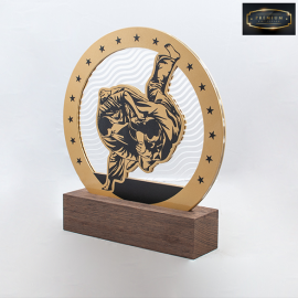 Trophée TBG7007 Judo