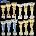 Lot de 12 coupes de sport (4 séries de 3 coupes)
