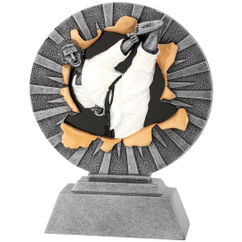 Trophée résine Karaté FG1032  18 cm