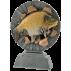 Trophée résine Carpe FG1351  23 cm