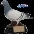 Trophée résine Comombophile 4157  16 cm